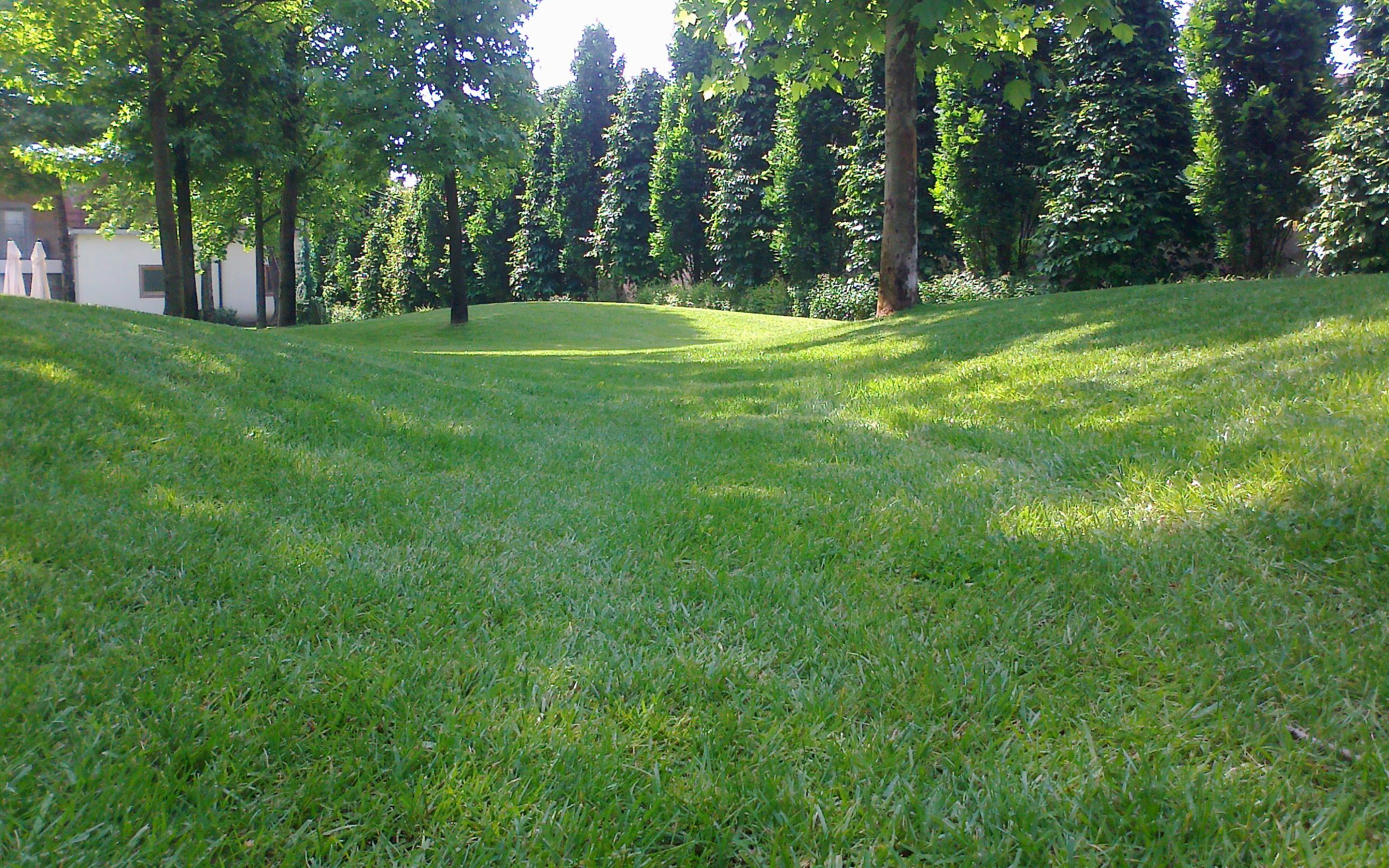 Realizzazione Giardini Vivai Parchi Brescia  BorgoverdeBorgoverde  Realizzazione Giardini a ...